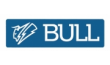 Шуроповерты BULL